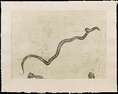 Prima Materia (Hydra) - Etching