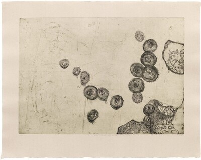 Prima Materia (Infected Cells) - Etching