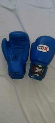 Боксерские перчатки из натуральной кожи AIBA BLUE