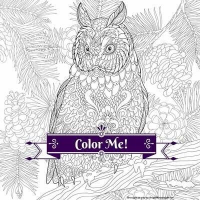 Eagle Owl Coloring Page