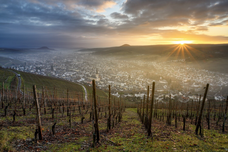 Morgendunst über Ahrweiler - Leinwand