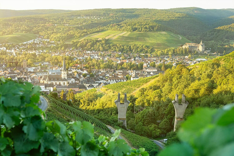 Sommerlicher Blick auf Ahrweiler
