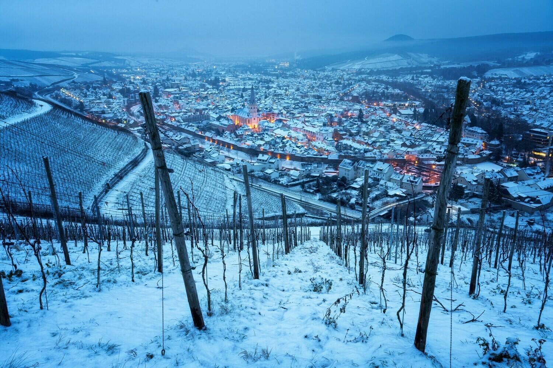 Winterliche Weinberge über Ahrweiler