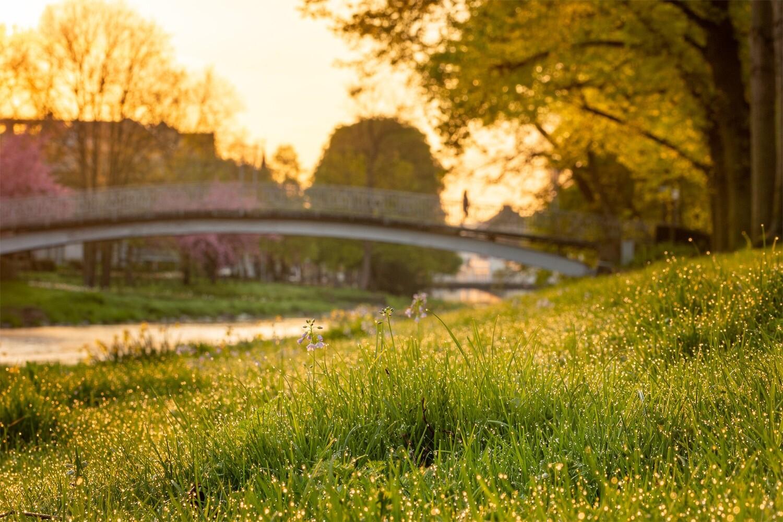 Frühling an der Maria-Hilf-Brücke in Bad Neuenahr