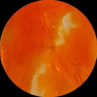 CANDIED ORANGE Transparent Liquid Pigment 30ml/ 1 oz