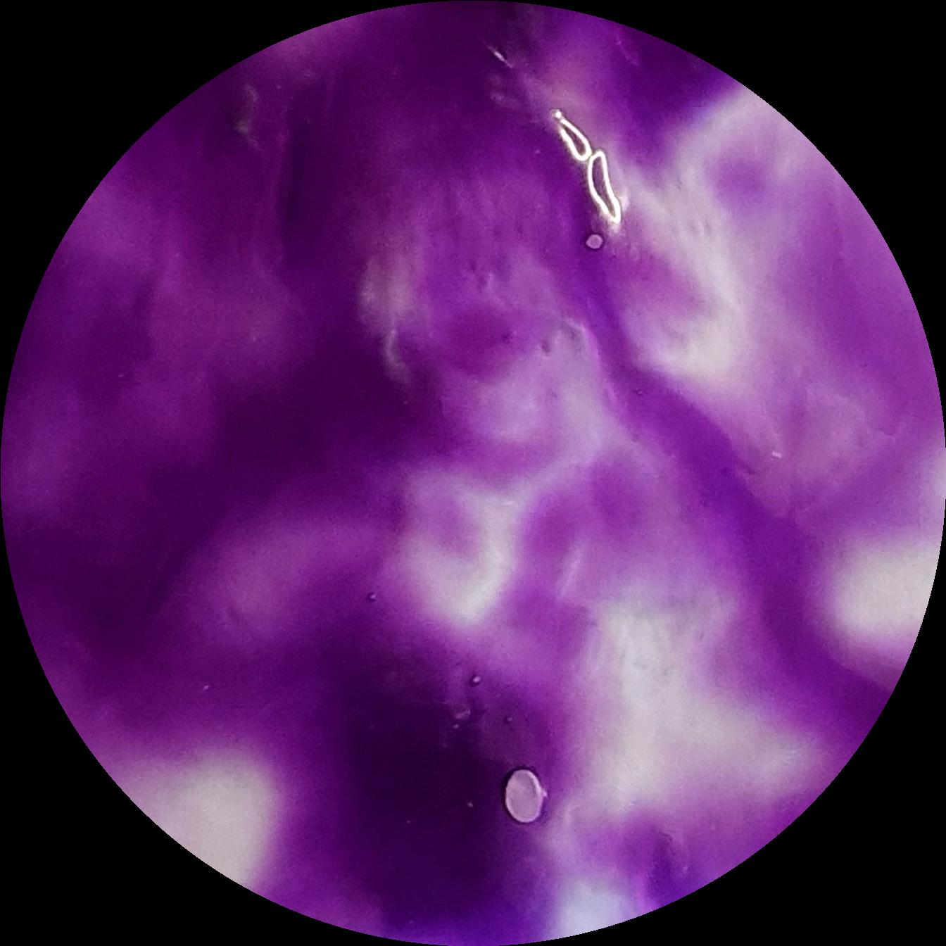 IRIS BLOOM   Transparent Liquid Pigment 30ml/ 1 oz