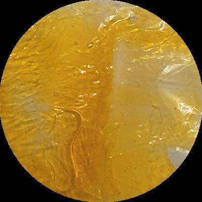 MUSTARD  Transparent Liquid Pigment 30ml/ 1 oz