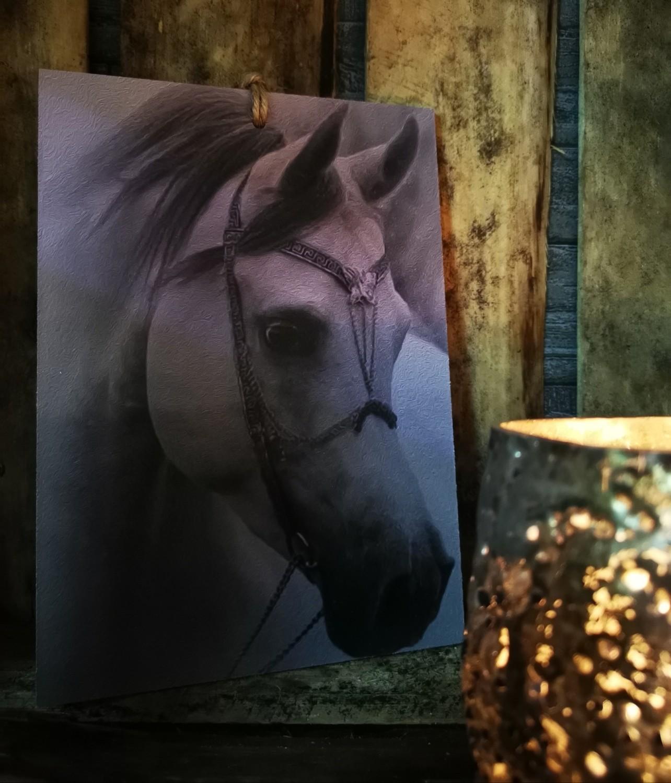 Sobere plaat op hout paard 1