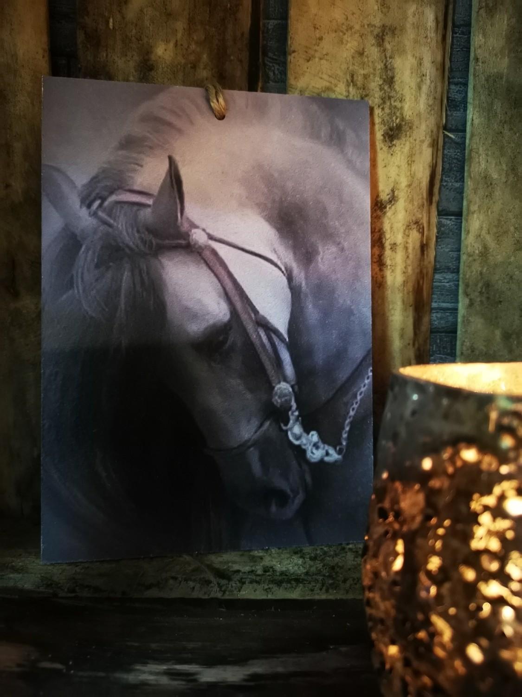 Sobere plaat op hout paard 2