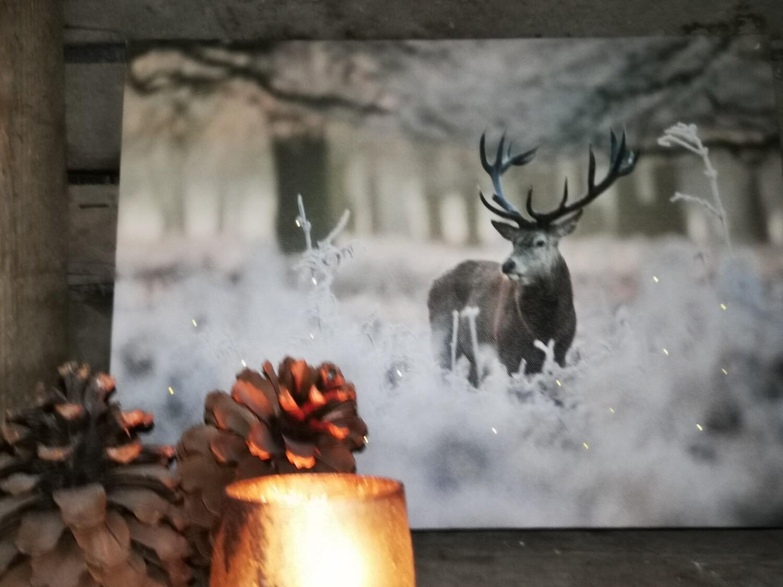 Canvas sneeuw met hert #2