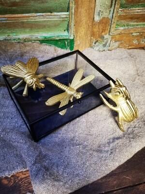 Gouden insecten