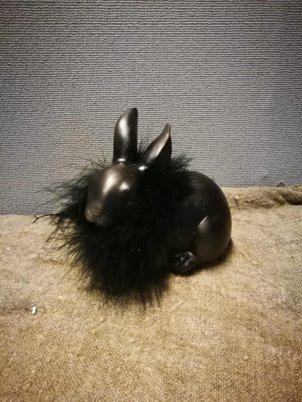 Zwarte haas M