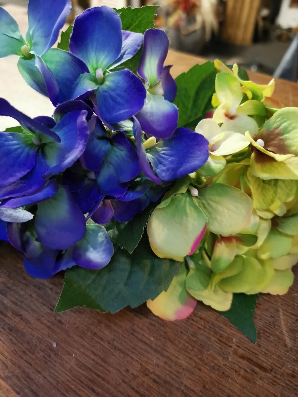 Hortensia klein diverse kleuren
