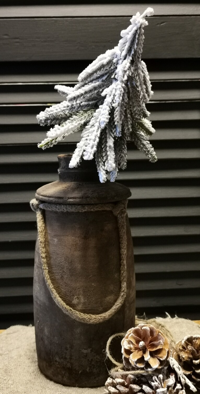 Steker dennenboom met sneeuw