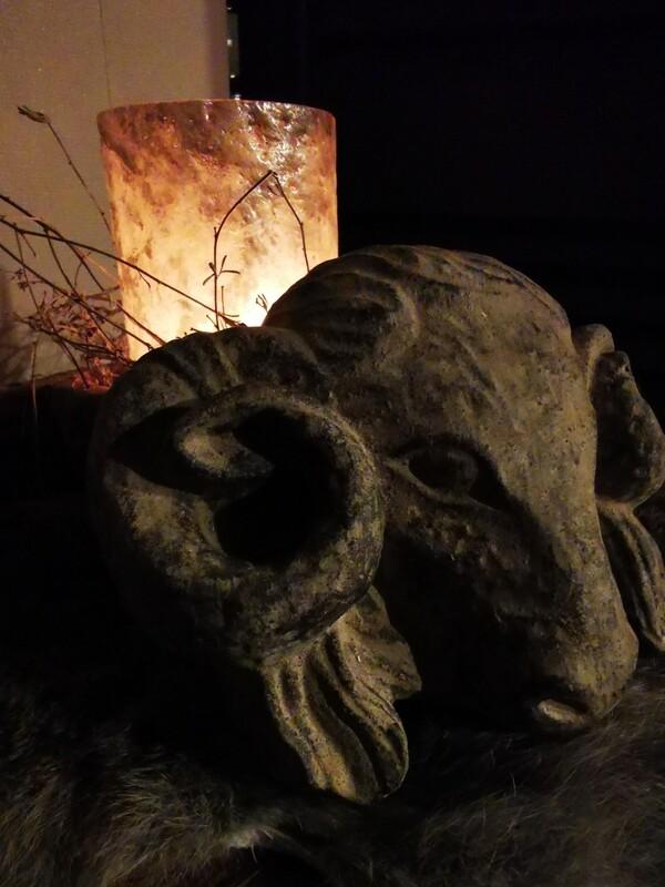 stenen Ramskop xs