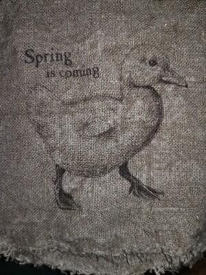 Shabby Spring