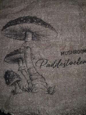 Shabby mushroom
