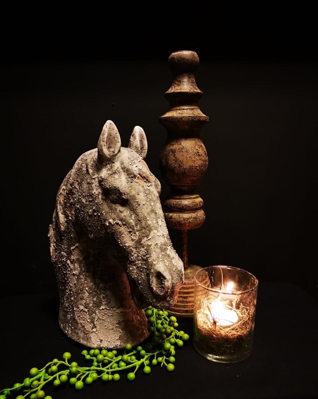 Paardenhoofd ornament