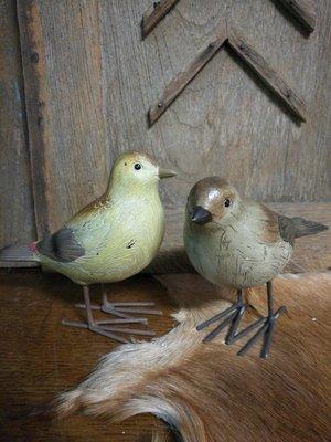 Vogel mus licht