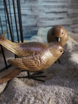Vogel staand op pootjes
