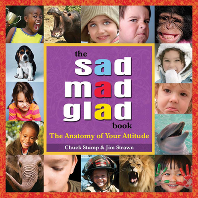 Sad Mad Glad Book