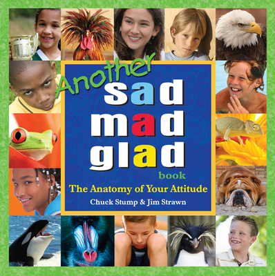 Another Sad Mad Glad Book