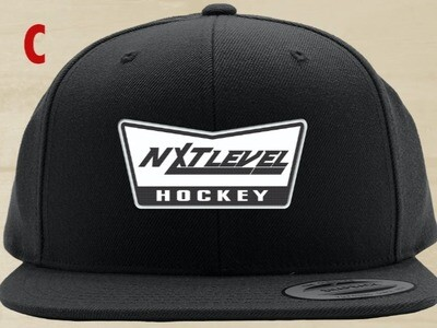 NLH - SNAP BACK W/ MESH