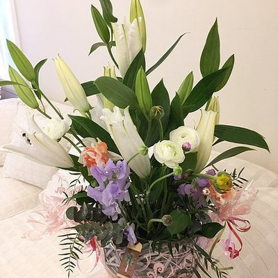 Flower basket #67