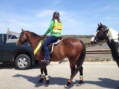Safe Riders Vest