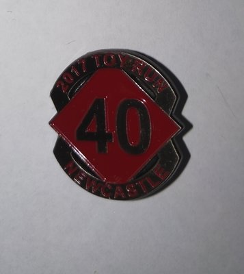 2017 Commemorative metal badge ( Screw post)