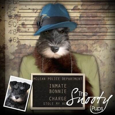 Custom Dog Portrait - Gangster Mobster