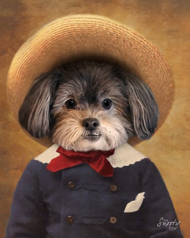 Dog Portrait Peasant