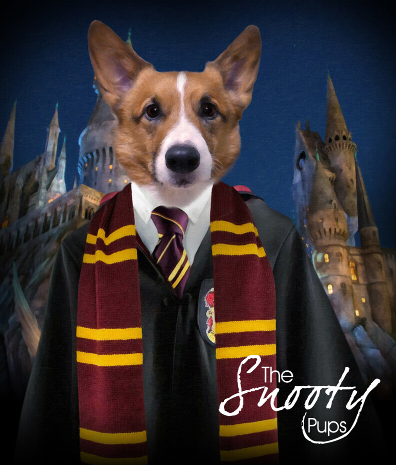 Custom Dog Portrait - Harry Potter