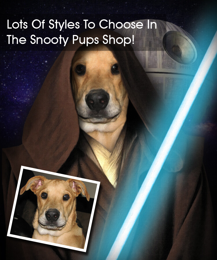 Obi-Wan Start Wars - Custom Dog Portrait