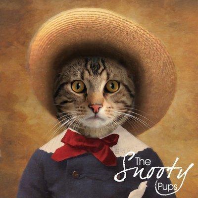 Peasant Cat Portrait