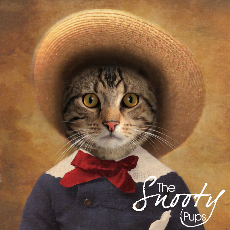 Peasant Cat Portrait