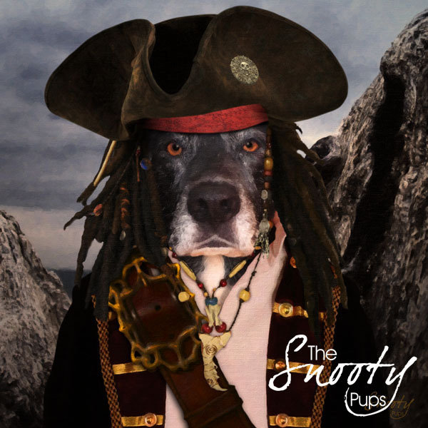 Dog Custom Portrait - Pirate