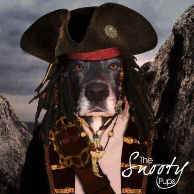 Dog Custom Portrait - Pirate