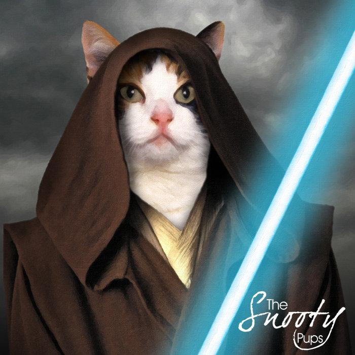 Star Wars Cat Portrait