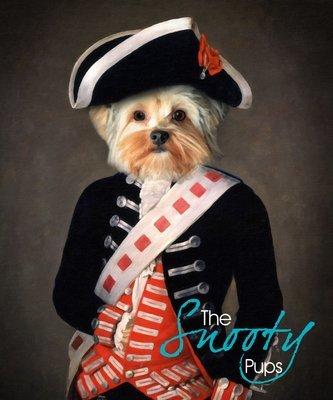 Military Yorkshire Terrier Portrait