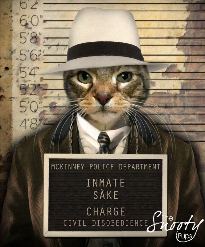 Custom Cat Portrait - Mobster