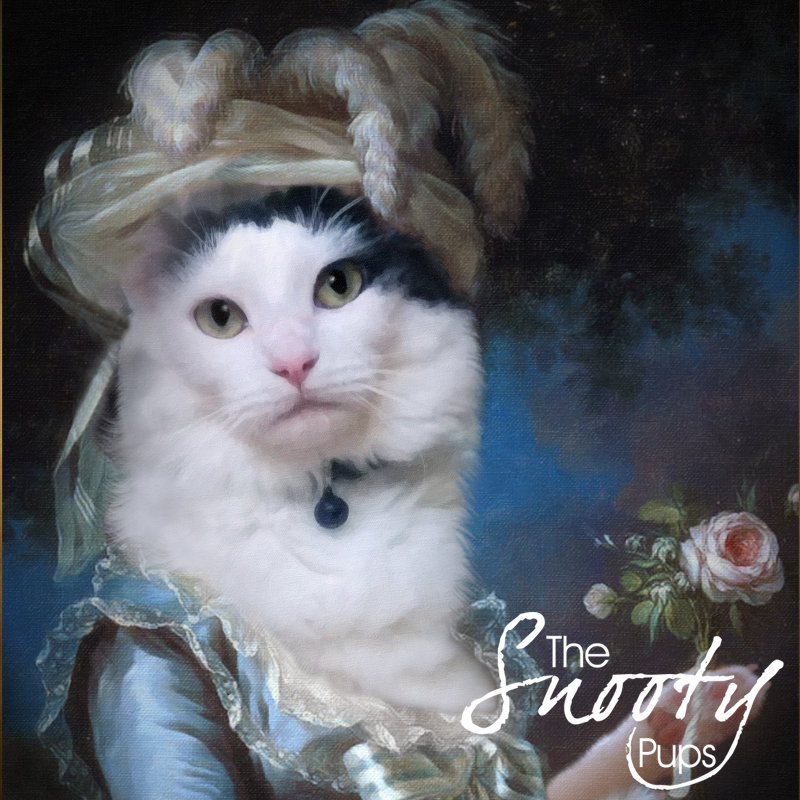 Custom Cat Portrait - Marie Antoinette