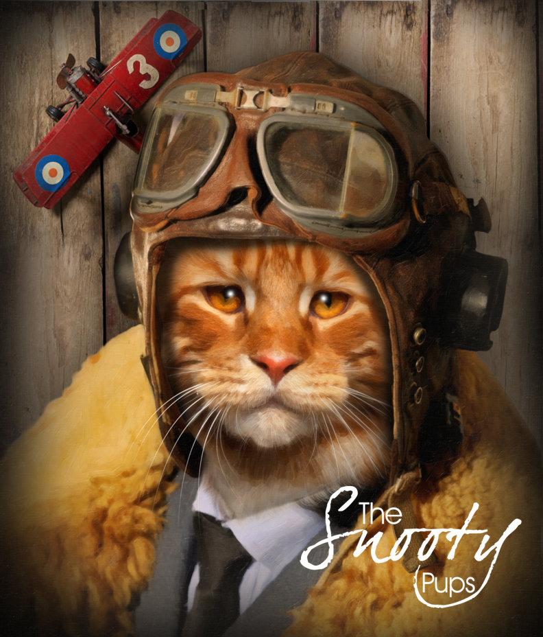 Custom Cat Portrait - Pilot