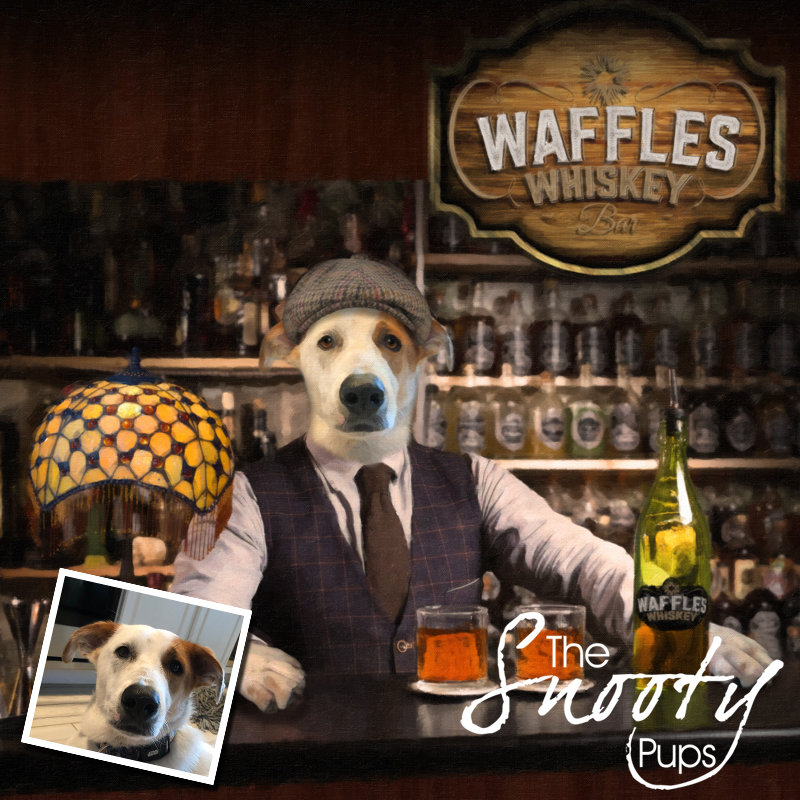 Dog Portrait - Bartender