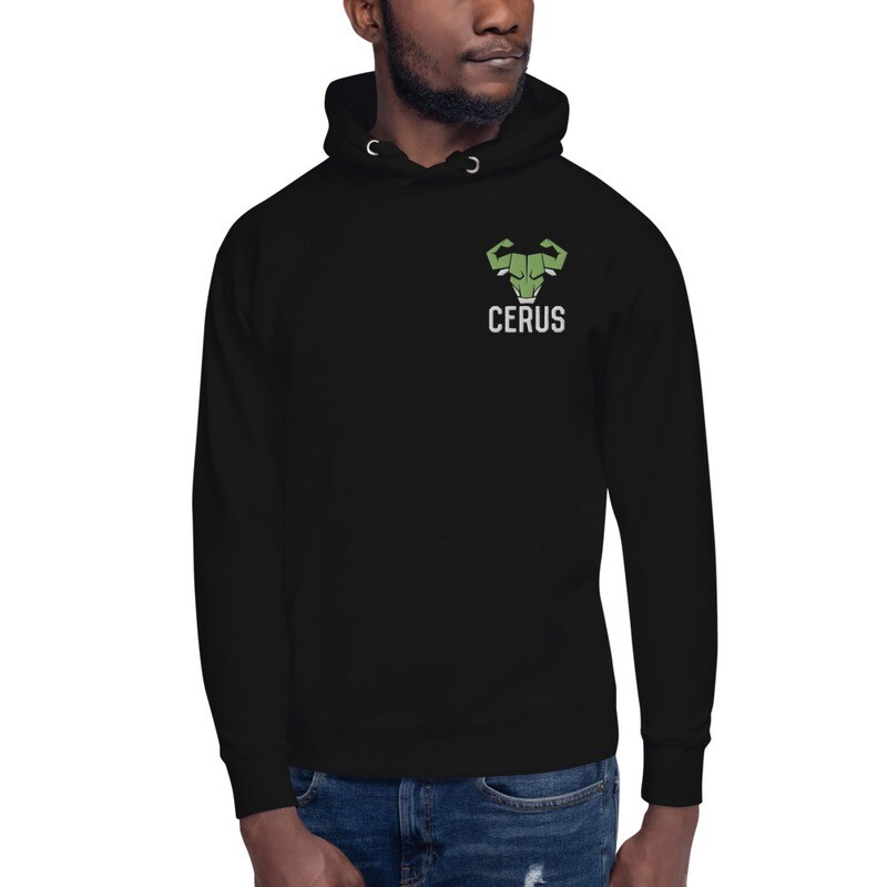 Cerus Embroidered Hoodie