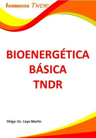 Bioenergética Básica Vivencial