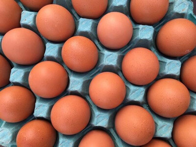 Beechwood Free Range Eggs  (Half Dozen)