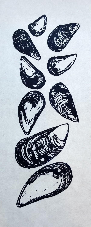 Mussel Shells