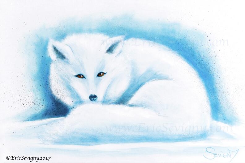 White Calm, Arctic Fox