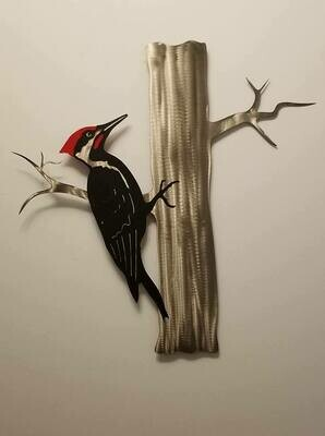 Woodpecker, Pileated on Tree